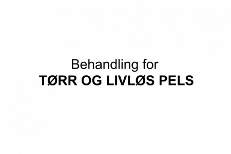 Behandling for Tørr og livløs pels